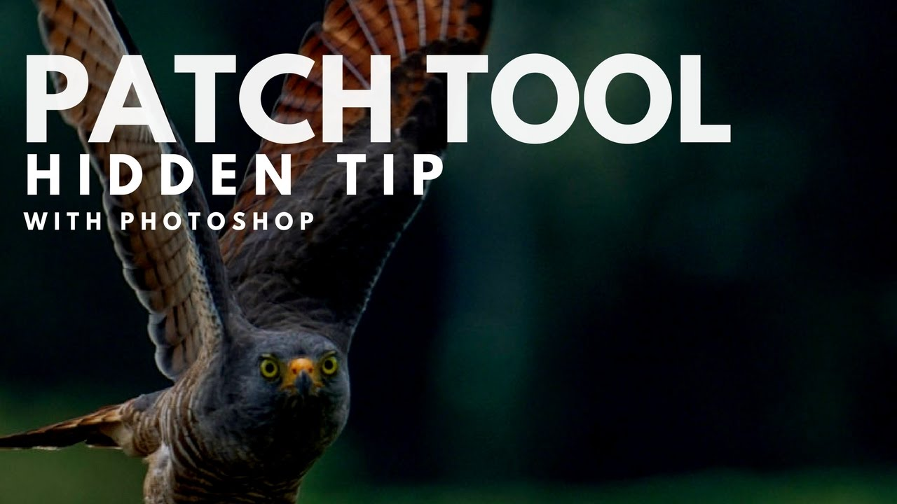 how to use patch tool in photoshop