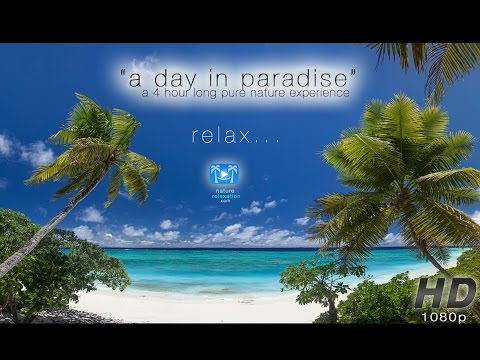 "4 HOURS Real Time Nature : ""A Day in Paradise"" Fiji Nature Relaxation Slow-Tv Video"