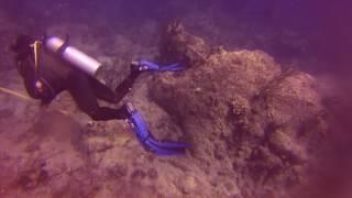 SCUBA Dive 2 Part 3   GP020306
