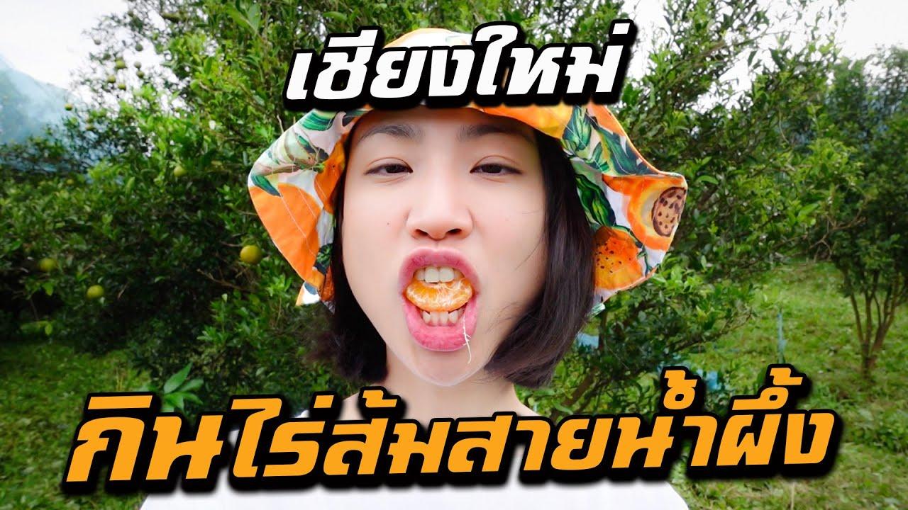 เชียงใหม่ - กินจนจุก บุกไร่ส้มสายน้ำผึ้ง  Ep. 2