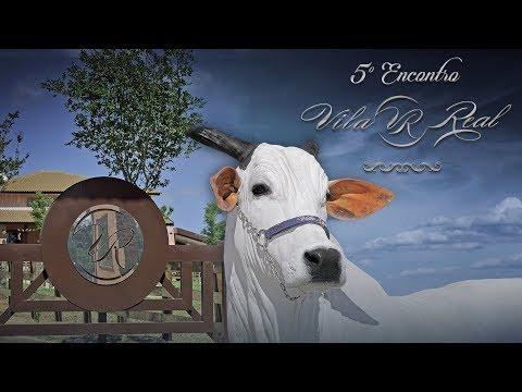 LOTE 02(SAB) - MADELINEH FIV VRI VILA REAL (VRI 1728)