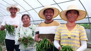 星光行动助力脱贫 村民们家有喜事【中国电影报道 | 20200601】