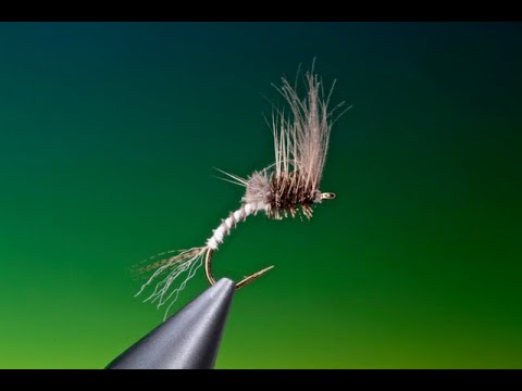 Fly Tying A Generic Cripple Mayfly With Barry Ord Clarke