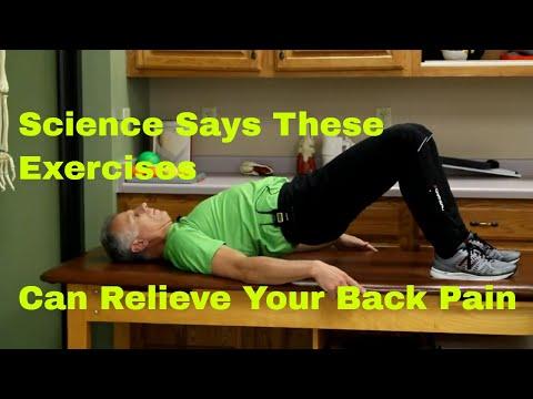 Eliminate Back Discomfort permanently Using These 12 Exercises