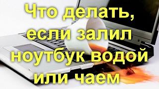 видео Залитый ноутбук: пролил на клавиатуру ноутбука чай, воду или кофе