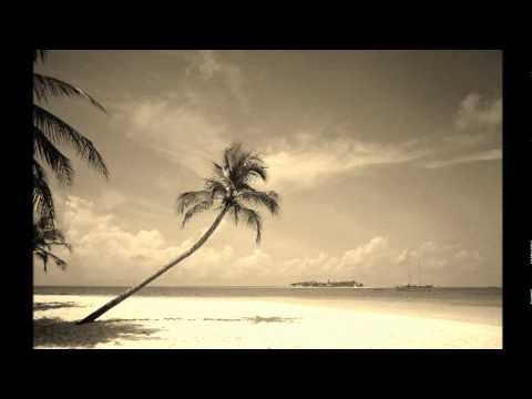 mkl feat dj lauralee   dancehall queen ( hold yuh remix ).wmv