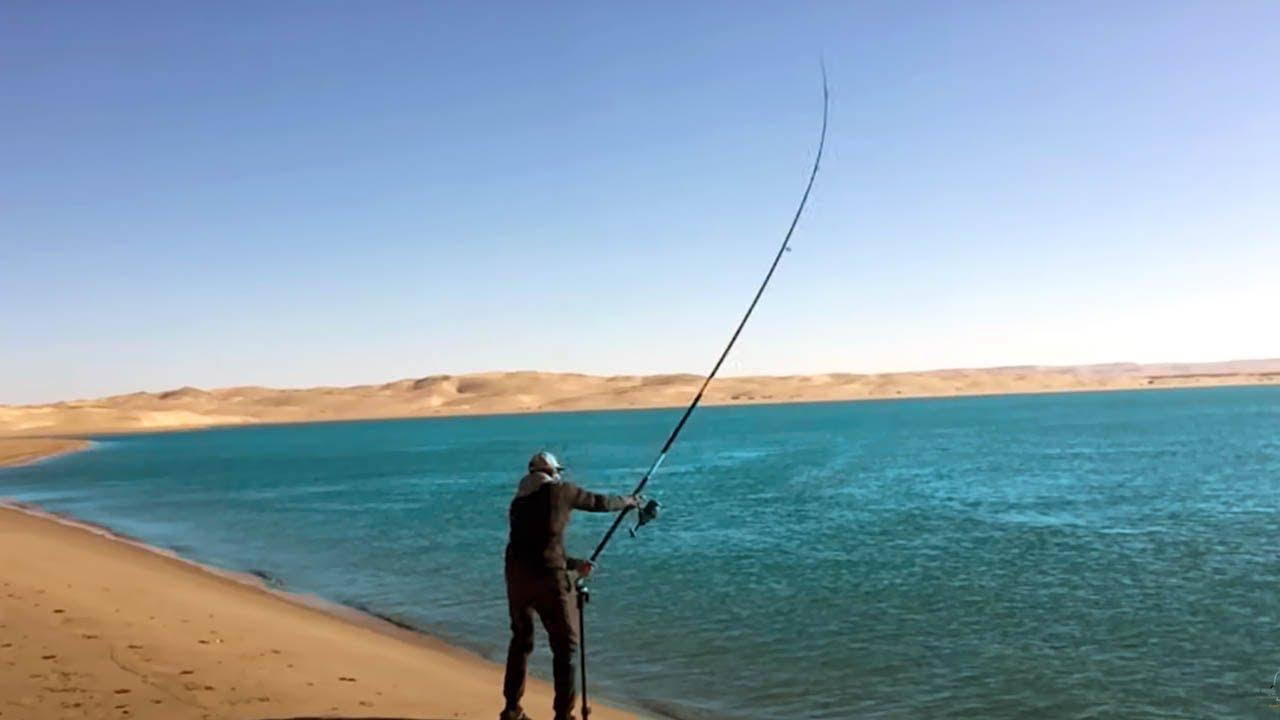 روعة وخيرات بحيرة النعيلة
