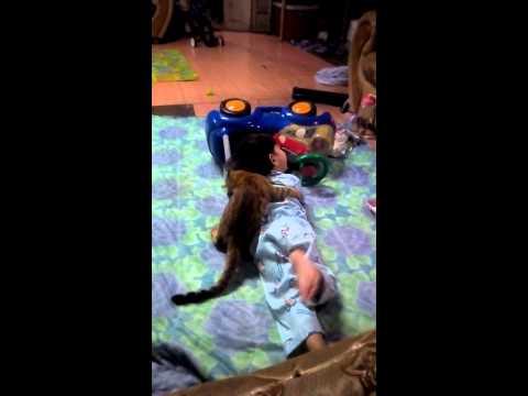 Tiger Si Kucing Bengal Dan Adik Daniel Part 5 Doovi