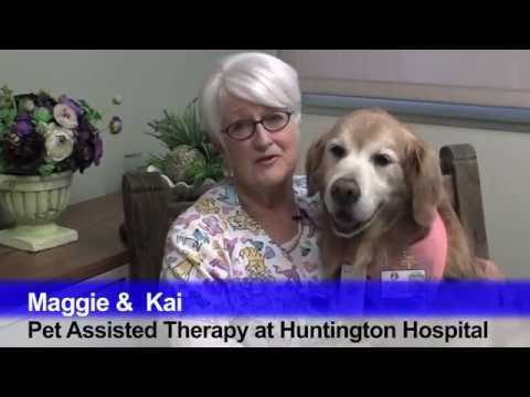Pet Assisted Therapy Program at Huntington Memorial Hospital
