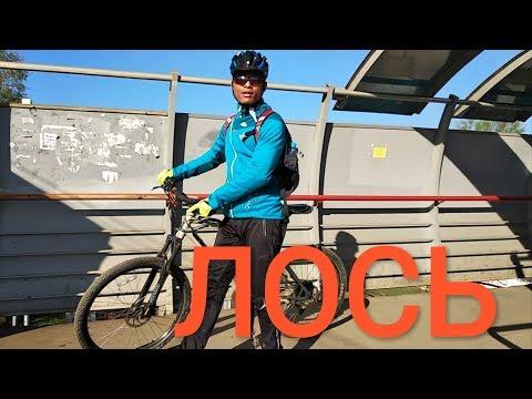 Москва. Станция Ж/д Лось (Ярославское направление) | MMST
