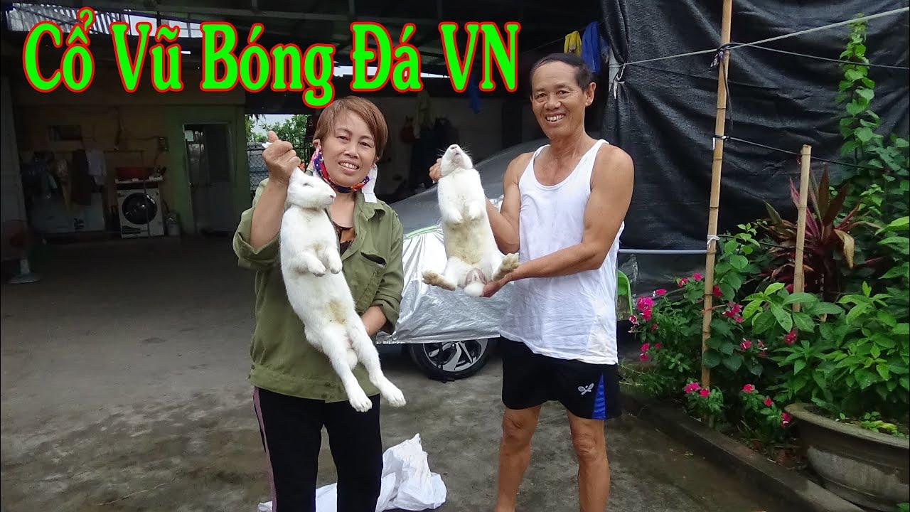 Không ngờ Gió Quê mừng Việt Nam thắng đậm là chính xác-Tiết canh Thỏ Cụ