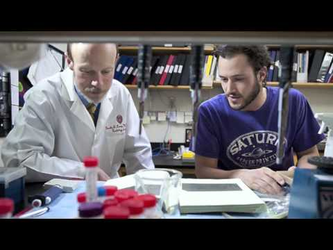 Cardiovascular Research at the University of Wisconsin-Madison