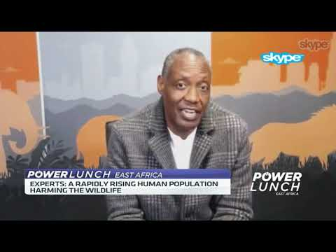Why the business for wildlife conservation is important - Expert