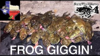 Texas Frog Gigging! (GIANT FROGS)