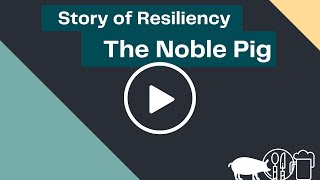 The Noble Pig | Story of Resiliency
