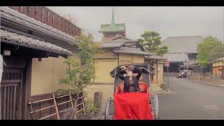 일본) 도쿄 여자가 교토 여행중