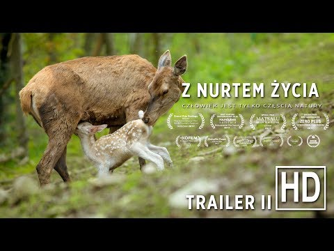 Z Nurtem Życia - Official Trailer #2 (HD)