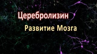 видео Таблетки модафинил