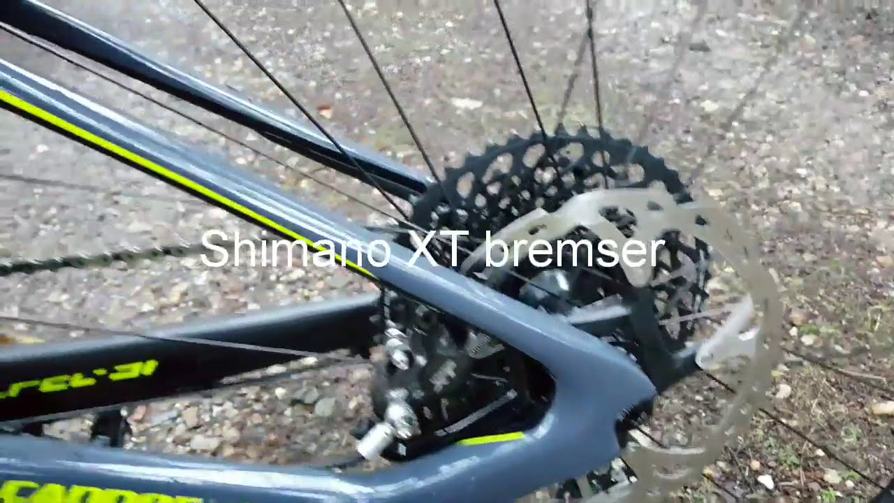 5d6644b2785 Test: Cannondale Scalpel Se - Sram 1x12 Speed - Mtbx - Mountainbike ...