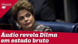 Áudio revela bronca de Dilma Rousseff em assessor
