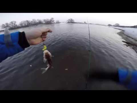 рыбалка на москва реке 2016 чулково