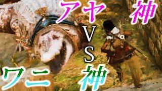 神聖すぎて倒せないワニ VS 最強の女性アヤ 勝つのはどっち?【アサシンクリードオリジンズ】検証 実況