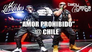Baby Rasta y Gringo - Amor Prohibido - Chile 2014
