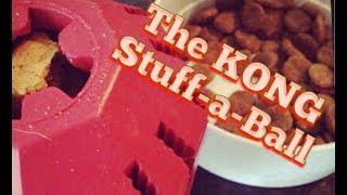 The KONG Stuff a Ball Full Review
