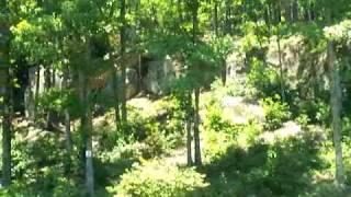 2 of 5 - A Ride Through Camp Corinth Cove Subdivision - Lewis Smith Lake, Alabama