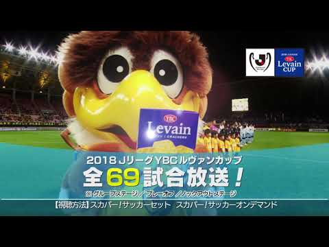 【2018JリーグYBCルヴァンカップ】3/7(水)開幕! スカパー!は全試合放送!
