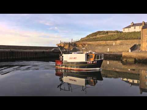 BURGHEAD HARBOUR LIFE