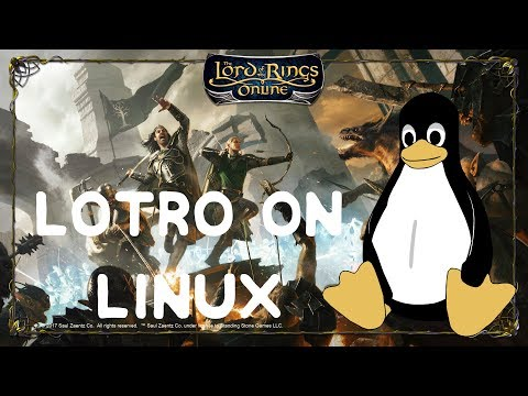 LotRO on Linux Video Guide: DX11 and in-game store working!