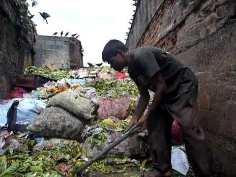 Sri Lanka,ශ්රී ලංකා,Ceylon,Kandy:Garbageman recycling the market trash