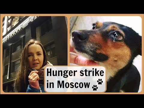 Vlog in Russian 10. Hunger Strike at the State Duma in Moscow. Закон нужен сейчас!