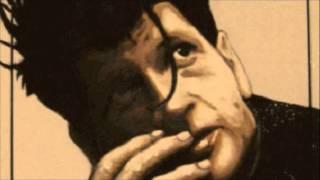 Herman Brood - Rock N Roll Junkie