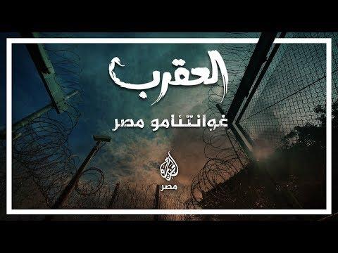 ???? العقرب.. غوانتامو#مصر  - نشر قبل 2 ساعة