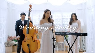 Download lagu Wedding Medley (Beautiful In White, Can't Help Falling In Love, Perfect and more) - Mild Nawin