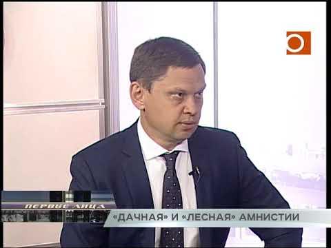 Новости Самары. «Дачная» и «лесные» амнистии