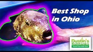 BEST Aquarium Shop in Ohio