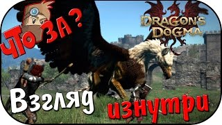 Что за Dragon's Dogma: Dark Arisen [PC 2016] ? - Взгляд Изнутри