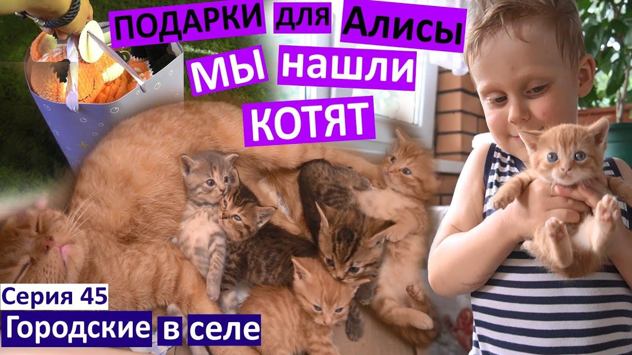 Серия 45 / Подарки для Алисы / Едем на день рождения / Нашли котят! / блинчики из кабачка