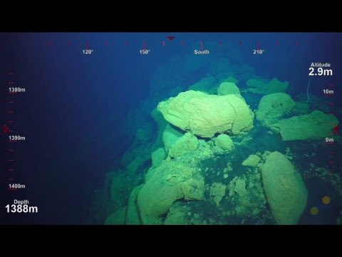 ROV SuBastian Dive 099- North Tafu Eruption - Underwater Fire
