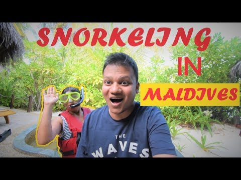 What we did on our Special Day | Snorkeling in Maldives | Luxurious Room Tour