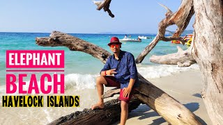Elephant Beach in Havelock Island l এলিফ্যান্ট বিচ l Elephant Beach in Andaman l Andaman Tour- 9 l