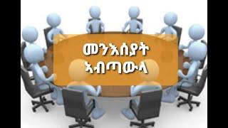 New YRF Video Meneseyat ab tawla/ዘተ መንእሰያት ኣብ ጣውላ