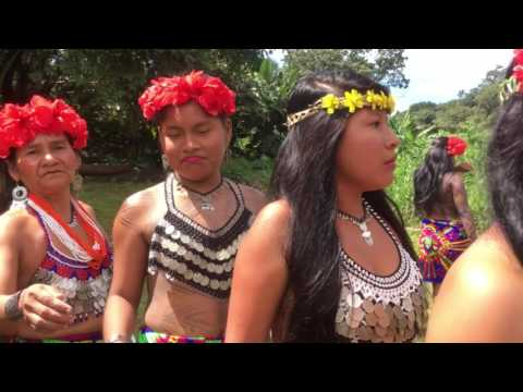 Tour of the Embera Indigenous Community in Panama