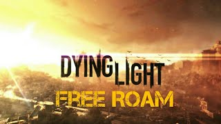 Dying Light Free Roam (PS4) Gameplay