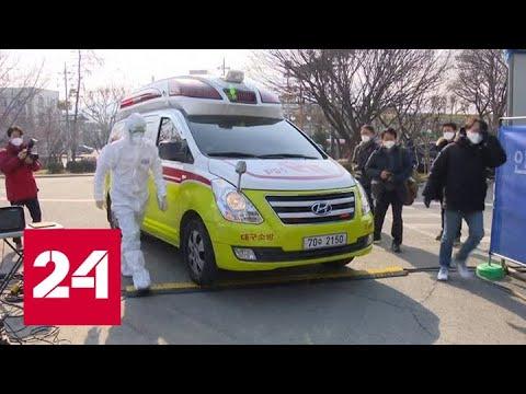 Число жертв коронавируса COVID-19 продолжает расти - Россия 24