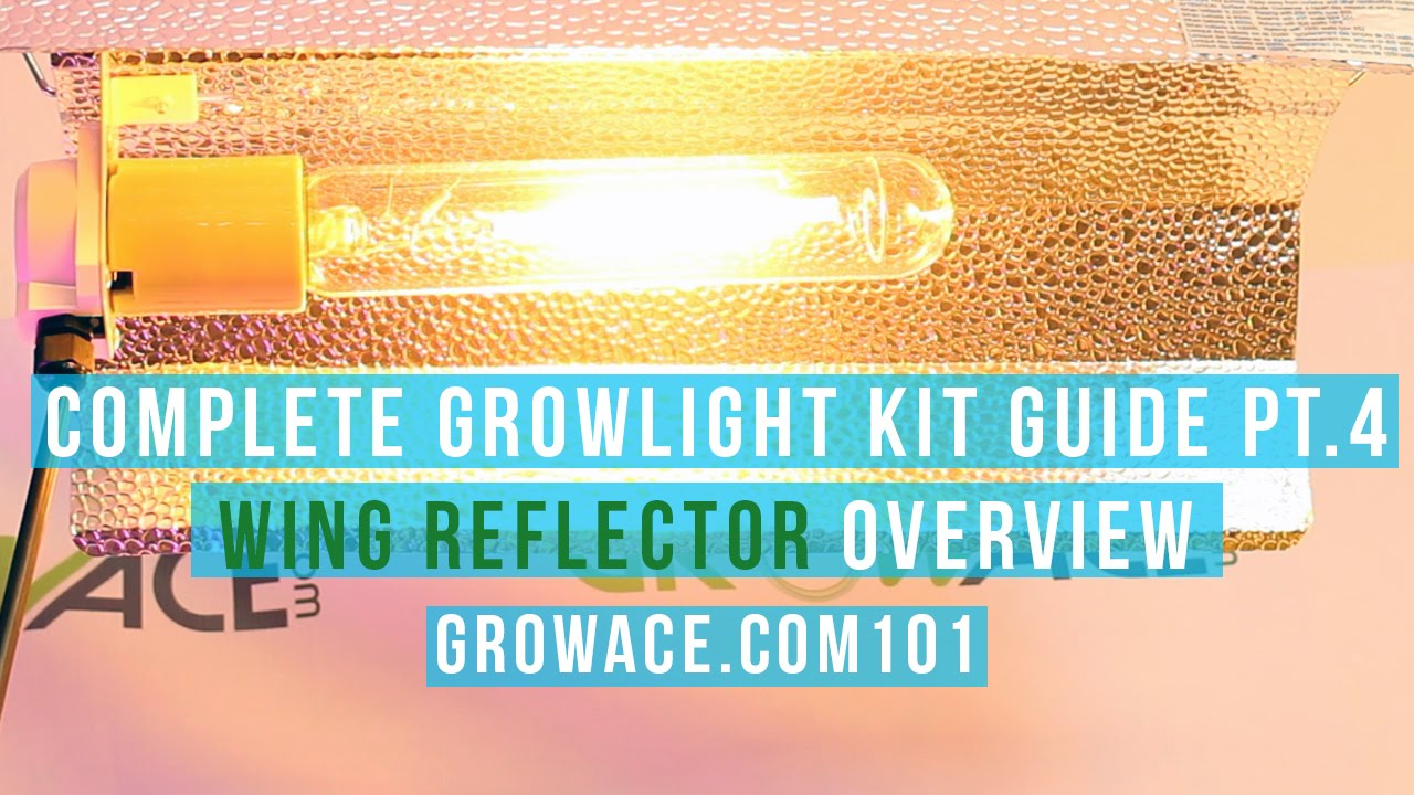 Complete Wing Reflector Guide for Indoor Gardening