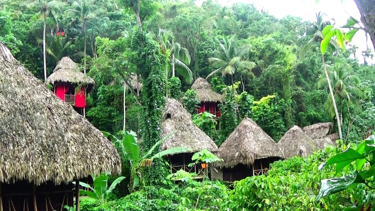 HOTEL ECOLOGICO DOMINICAN TREE HOUSE,PROVINCIA SAMANA REGION NORDESTE REPUBLICA DOMINICANA